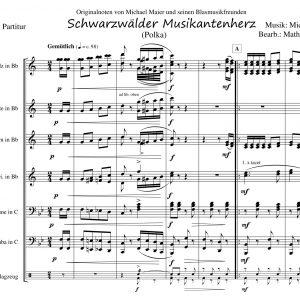 Schwarzwälder Musikantenherz